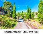 beautiful landscape garden park ... | Shutterstock . vector #380595781