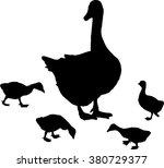 Illustration With Newborn...