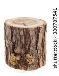 tree stump  isolated on white | Shutterstock . vector #380787541