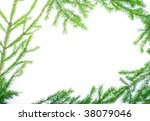 green fir branches with space... | Shutterstock . vector #38079046