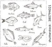 fish collection  dorado  fish... | Shutterstock .eps vector #380794021