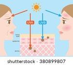 infographic skin illustration.... | Shutterstock .eps vector #380899807