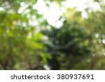 Nature Blur Abstract Background