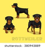 Dog Rottweiler Cartoon Vector...