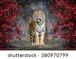 Portrait Tiger - Fine Art prints