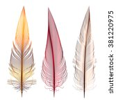 Set Of Transparent Feathers  ...