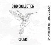 colibri bird geometric lines... | Shutterstock .eps vector #381228304
