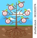 tree infographics template for... | Shutterstock .eps vector #381302074