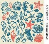 vector sea shells and...   Shutterstock .eps vector #381368479