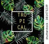 tropical split leaves palm... | Shutterstock . vector #381473239