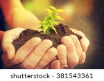 hand and plant | Shutterstock . vector #381543361