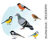 a set of birds  isolated vector ... | Shutterstock .eps vector #381656494