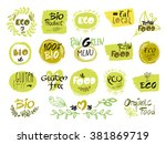 set of hand drawn sketch which... | Shutterstock .eps vector #381869719