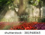 Colorful Tulips Flower Garden...