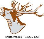 roaring red deer | Shutterstock . vector #38239123