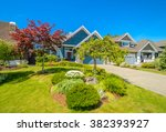 plants in front of the house ...   Shutterstock . vector #382393927