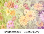 multi colored flowers.  relax... | Shutterstock . vector #382501699