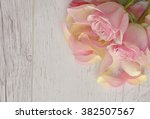 close up macro background with... | Shutterstock . vector #382507567