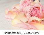 close up macro background with... | Shutterstock . vector #382507591