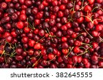 Red Cherries. Cherry Selection