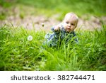 interested blond baby boy... | Shutterstock . vector #382744471