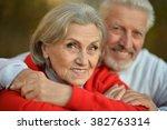 happy fit senior couple | Shutterstock . vector #382763314