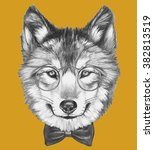 portrait of wolf with glasses... | Shutterstock . vector #382813519