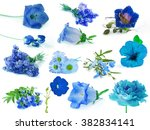 Stock photo collection of blue flowers isolated on white background 382834141