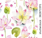 lilies and lotuses on a white... | Shutterstock . vector #382872391