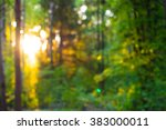 abstract spring forest bokeh... | Shutterstock . vector #383000011