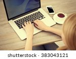 woman working with laptop on... | Shutterstock . vector #383043121