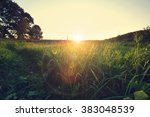 spring grassland | Shutterstock . vector #383048539