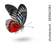 beautiful red butterfly lower... | Shutterstock . vector #383062381