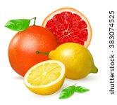 orange grapefruit with leaf and ... | Shutterstock .eps vector #383074525