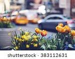 New York City Spring Street...