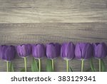 bunch of purple tulips on... | Shutterstock . vector #383129341