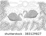 Hand Drawn Birds   Two Swans...