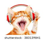 Stock photo beautiful cat with headphones isolated on white 383139841