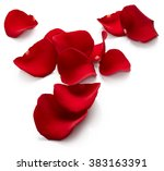 Stock photo red rose petals isolated on white background 383163391