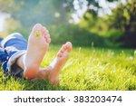 female legs lie on the grass... | Shutterstock . vector #383203474