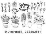 set of vector hand drawn line... | Shutterstock .eps vector #383303554