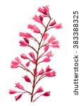 beautiful pink  purple flowers  ... | Shutterstock .eps vector #383388325