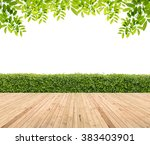 Wooden Floor With Hedge For...