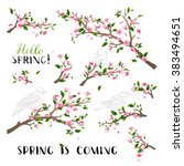 vector set of spring blanches... | Shutterstock .eps vector #383494651