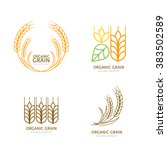 set of organic wheat grain... | Shutterstock .eps vector #383502589