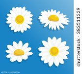 vector illustration chamomile... | Shutterstock .eps vector #383511229