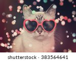 Stock photo a white cute cat with red heart sunglasses is on a black background with colorful sparkles around 383564641