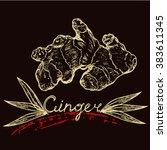 logo ginger root and leaves of... | Shutterstock .eps vector #383611345