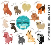 cute dog and puppy icons... | Shutterstock .eps vector #383614255