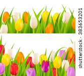 tulip border set with gradient...